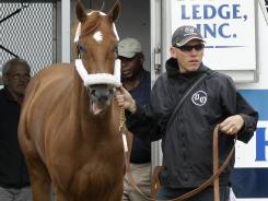 Kentucky Derby winner I'll Have Another is led out of a trailer by foreman Benjamin Perez after arriving at Pimlico Race Course in Baltimore on Monday evening. He will compete for the second leg of the Triple Crown on May 19.