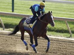 Exercise rider George Alvarez takes Preakness favorite Bodemeister for a workout Thursday morning at Pimlico Race Course.