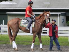 Dullahan, with exercise rider Faustino Aguilar, walks to the track. For Dullahan owners the excitement Saturday still will be palpable.