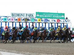 The 11-horse field charges out of the starting gate to begin the 144th running of the Belmont Stakes.