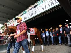 I'll Have Another is led out of the barn en route to the winner's circle for his retirement ceremony before the start of the 144th running of Belmont Stakes at Belmont Park.