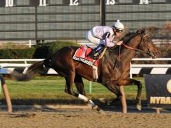 This was Ron the Greek's second Grade 1 victory this year, following the Santa Anita Handicap in March.