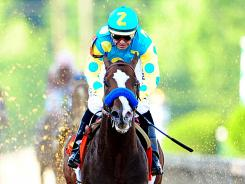 Bodemeister was runner-up to I'll Have Another in the Kentucky Derby and Preakness.