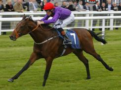 Usain Colt, ridden by Richard Hughes, wins a race in Newbury England in October. His owners hope to meet with his more famous namesake while he's in London.