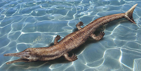 An illustration of the Jurassic fish-like crocodile found in Oregon.
