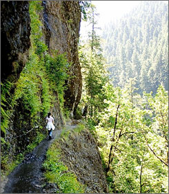Hiking at Eagle Creek, Oregon. Walking for three hours each week gets more oxygen to the brain to improve memory.