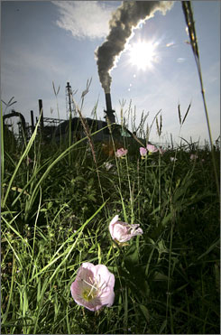 Flowers bloom across the street for an oil refinery smoke stack in Port Arthur. Texas, the leader in emitting this greenhouse gas, cranks out more than the next two biggest producers combined, California and Pennsylvania, which together have twice Texas' population.