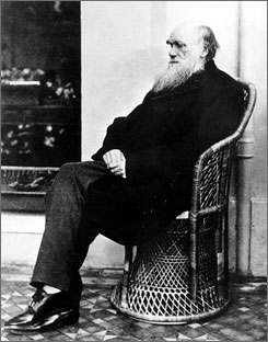 Charles Darwin poses in a wicker chair in 1875. Darwin?s first publication, coming after his 1831 to 1836 worldwide voyage on the H.M.S. Beagle, was a defense of missionary work in the Pacific.