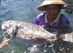 Indonesian fisherman Yustinus Lahama holds up a coelacanth, an ancient fish once thought to have become extinct at the time of the dinosaurs, in a quarantine pool after he caught it in the sea off North Sulawesi province May 19, 2007.