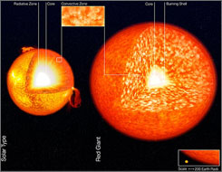 The structure of a solar-like star (left) and a red giant (right), not to scale. In red giants, the convection zone is much larger than younger stars, encompassing more than 35 times more mass than in the Sun.