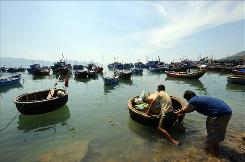 A bamboo boat loaded with provisions for a fishing trip is pushed into the sea at a fishing port in the central province of Khanh Hoa. Vietnam's coastal areas are now in danger of overfishing.