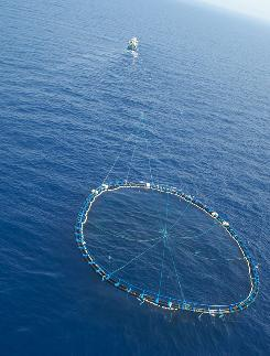 An Italian trawler towing a cage of bluefin tuna in the central Mediterranean Sea.