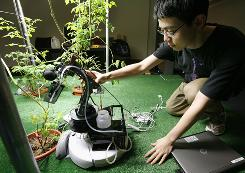 Massachusetts Institute of Technology student Huan Liu of Shanghai, positions a robot gardener near a tomato plant while demonstrating its capabilities in the Artificial Intelligence Laboratory on the schools campus in Cambridge, Mass.