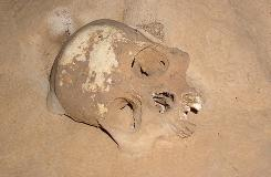 A skull found in the Achtun Tunichil Muknal cave.