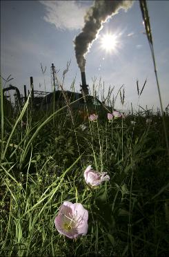 FILE - In this file photo made May 15, 2007, flowers bloom across the street from an oil refinery smoke stack in Port Arthur, Texas.   According to a Environment Texas report released Thursday, Nov. 12, 2009, Texas,  the state that produces the most greenhouse gases, has decreased emissions.