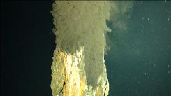 This undated photo released by the National Oceanography Centre in Southampton, England, Monday April 12, 2010, shows a cloud of smoky water billowing from the top of a tower of metal ore at a volcanic vent more than three miles beneath the surface of the Caribbean. The vent, located in the Cayman Trough, is the deepest ever discovered, a British scientific expedition says.