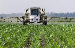 Central Illinois corn farmer Jerry McCulley sprays the weed killer glyphosate across his cornfield in Auburn, Ill. on June 1. A handful of hardy weeds have adapted to survive glyphosate, sold as Roundup and a variety of other brands, which many scientists say threatens to make the ubiquitous herbicide far less useful to farmers.