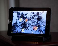 The new Toshiba Tablet, an iPad-like computer the company will sell in mid-2011. It differs from the iPad in that it has more input slots for media, and supports Adobe Flash for online video.