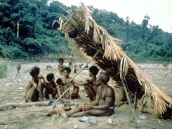 An Agta hunter-gatherer camp group in the Philippines in 1981.