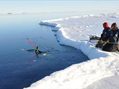 The VideoRay ROV is moving the glider away from the ice edge.