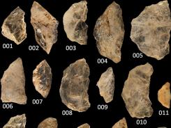 A collection of ancient arrowheads.