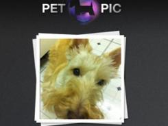 A screen grab of the Pet Pic app.