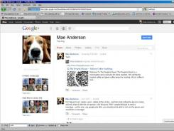 A page from Google+, the search giant's entry into social media.