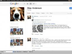 This screen shot shows a page from Google+.