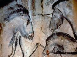These horses' heads were depicted in the Chauvet cave in southeast France more than 30,000 years ago.  .