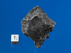 A Martian meteorite was recovered in December last year near Foumzgit, Morocco.