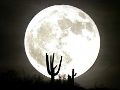 Saquaro cacti are silhouetted by a full moon rising in 2007 over South Mountain in Phoenix.