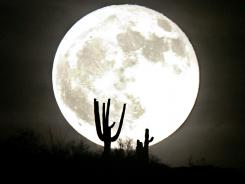 Cacti are silhouetted by a full moon rising over Arizona in 2007.