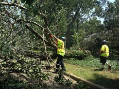 A crew removes downed trees in Falls Church, Va., after a powerful overnight storm in the Washington, DC region.