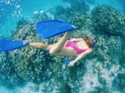 You'll definitely need special gear if you want to take underwater photos like this one.