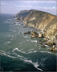 Visitors to Point Reyes National Seashore, about an hour's drive north of San Francisco, will find deserted beaches with whales offshore, seals lolling along the coast and bobcats roaming the forest.