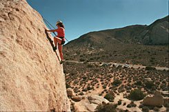 Amy Bird, 25, of Berkeley, Calif., climbing a rock formation in Joshua Tree National Park.