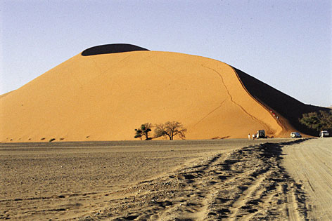 Take a walk on the wild side in Namibia with G.A.P. Adventures.