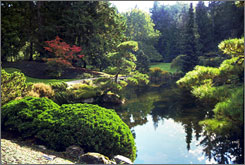 A late summer view of the Japanese Garden from the Guest House at the Bloedel Reserve.