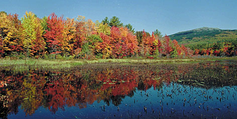 Seeing double: Colorful trees and Mount Monadnock are reflected in Perkins Pond in Jaffrey, N.H., where you also can find Willa Cather's grave.