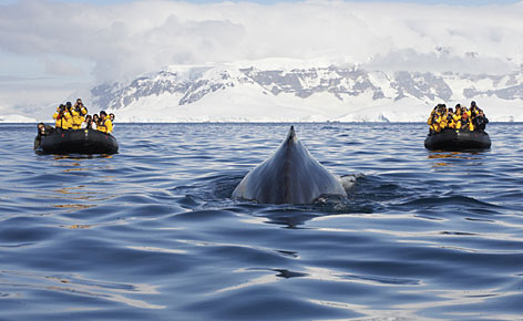 On top of the world: Adventure Life offers a 25-night journey through the Northeast Passage between Alaska and Russia. Clients are taken by icebreaker from Anchorage to Murmansk.