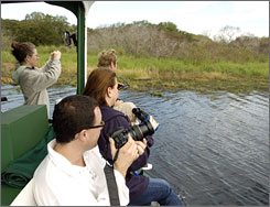 "Location managers from Los Angeles look for alligators while taking a tour on the ""Gator Gal"" tour boat. The Sarasota County Film and Entertainment Office hosted the group."