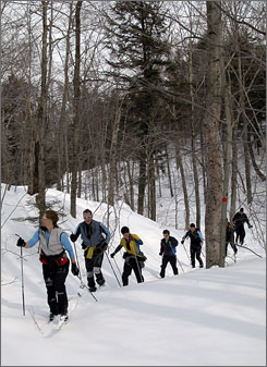 A group of cross-country skiers explore a feeder trail to the Catamount Trail in Stowe, Vt.