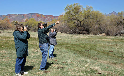 Watching and pointing: Birders enjoy a moment on a clear day at Kern River Preserve last month.