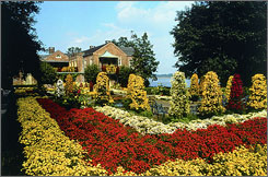 Bellingrath Gardens and Home hosts the Annual Mum Festival in Mobile, Ala., each November.