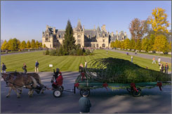 Workers deliver a 55-foot Christmas tree to the Biltmore House in Asheville, N.C. The estate's holiday decorations can be seen through Jan. 4.