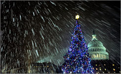 Snow falls on last year's Capitol Christmas Tree in Washington, D.C. This year's tree will be lit on Dec. 2.