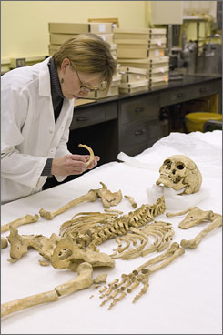 Smithsonian forensic anthropologist Karin Bruwelheide examines a 17th-century skeleton. Since 1992, researchers have unearthed the remains of hundreds of early settlers around Chesapeake Bay.