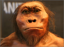 A replica of a prehistoric man at the Maropeng Visitors Center.