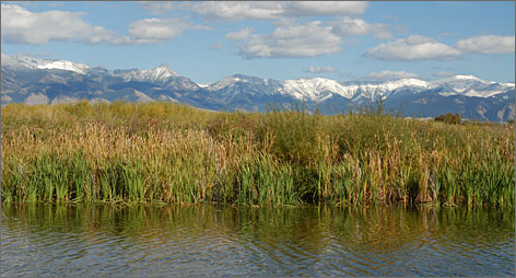 """People are coming to Montana because of our pristine environment, our open space, our wildlife, our outdoor recreation,"" said Betsy Baumgart, Travel Montana's administrator."