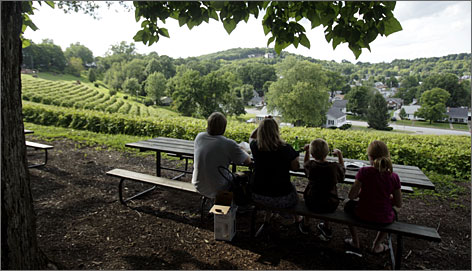 The abundance of wineries along Missouri's Katy Trail makes for a memorable vacation. Stone Hill Winery is one of the state's largest and  a popular site for weddings.